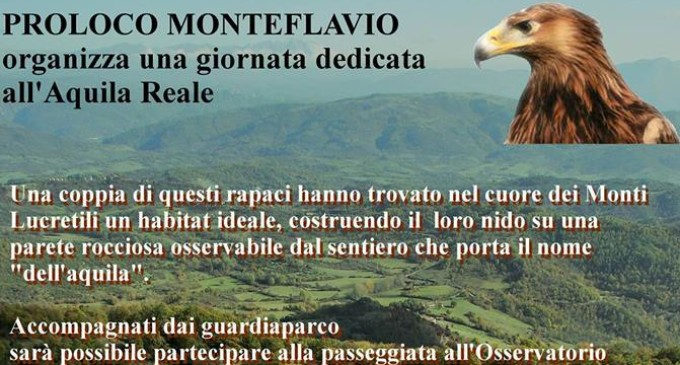 Monteflavio/Una passeggiata per osservare l'Aquila Reale nei cieli dei Lucretili
