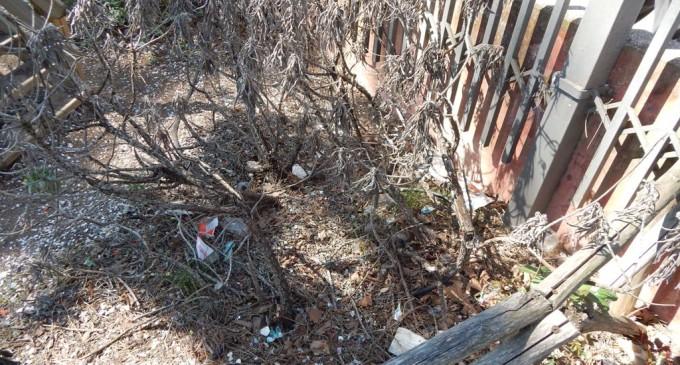 Guidonia/Nella pineta di via Roma niente fiori, solo rifiuti: la segnalazione di una mamma