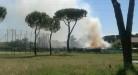incendio-albuccione-4